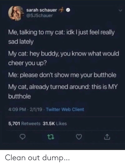Please Dont: sarah schauer  @SJSchauer  Me, talking to my cat: idk I just feel really  sad lately  My cat: hey buddy, you know what would  cheer you up?  Me: please don't show me your butthole  My cat, already turned around: this is MY  butthole  4:09 PM 2/1/19 - Twitter Web Client  5,701 Retweets 31.5K Likes Clean out dump…