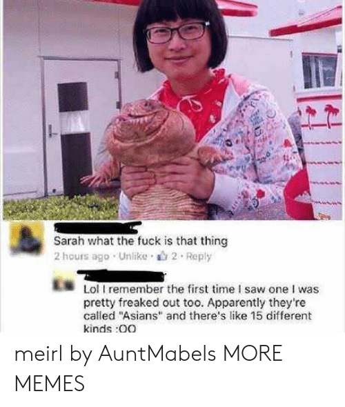 "Apparently, Dank, and Lol: Sarah what the fuck is that thing  2 hours ago . Unlike .山2 . Reply  Lol I remember the first time I saw one I was  pretty freaked out too. Apparently they're  called ""Asians"" and there's like 15 different  kinds:0O meirl by AuntMabels MORE MEMES"