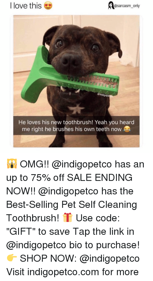 "Funny, Love, and Memes: @sarcasm_only  I love this  ind  gope  He loves his new toothbrush! Yeah you heard  me right he brushes his own teeth now 🙀 OMG!! @indigopetco has an up to 75% off SALE ENDING NOW!! @indigopetco has the Best-Selling Pet Self Cleaning Toothbrush! 🎁 Use code: ""GIFT"" to save Tap the link in @indigopetco bio to purchase! 👉 SHOP NOW: @indigopetco Visit indigopetco.com for more"