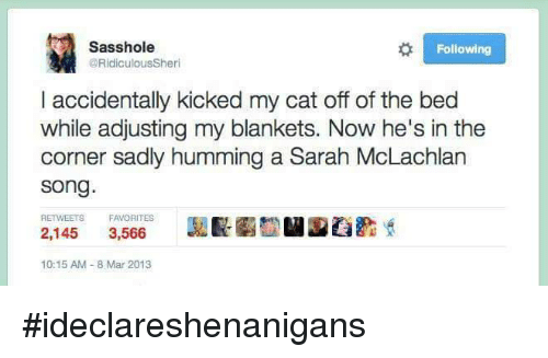8 Mars: Sass hole  Following  @Ridiculous Sheri  l accidentally kicked my cat off of the bed  while adjusting my blankets. Now he's in the  corner sadly humming a Sarah McLachlan  Song  RETWEETS FAVORITES  2,145  3,566  10:15 AM 8 Mar 2013 #ideclareshenanigans