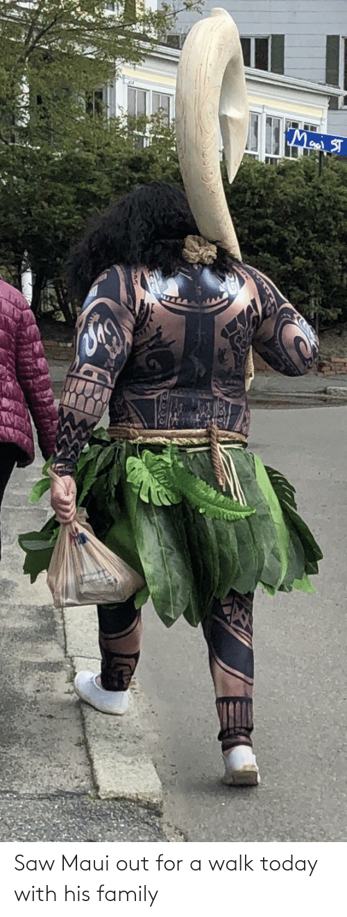 out: Saw Maui out for a walk today with his family