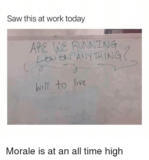 morale: Saw this at work today  ARE WE RUANTNG  will to lie Morale is at an all time high