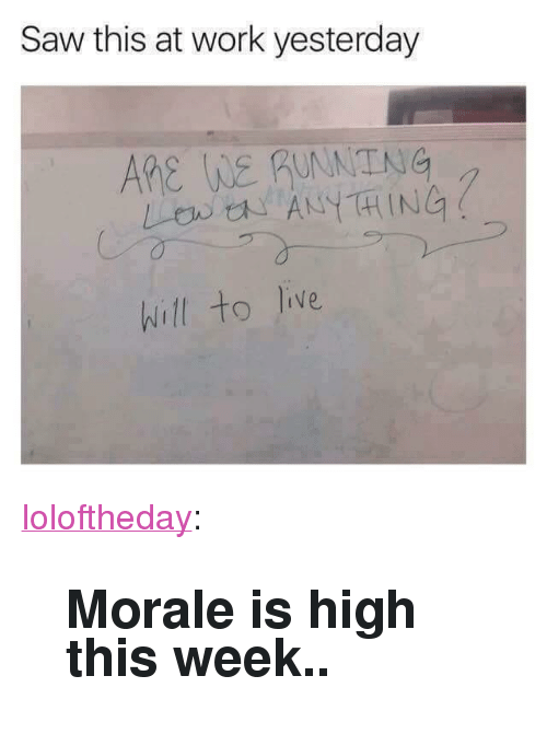 """morale: Saw this at work yesterday  ARe WE guNNTNG  LB ANYTHING  hill to live <p><a href=""""https://loloftheday.tumblr.com/post/166571984415/morale-is-high-this-week"""" class=""""tumblr_blog"""">loloftheday</a>:</p>  <blockquote><h2>Morale is high this week..</h2></blockquote>"""