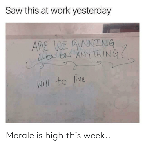 morale: Saw this at work yesterday  ARe WE guNNTNG  LB ANYTHING  hill to live Morale is high this week..