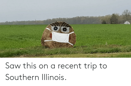 Southern: Saw this on a recent trip to Southern Illinois.