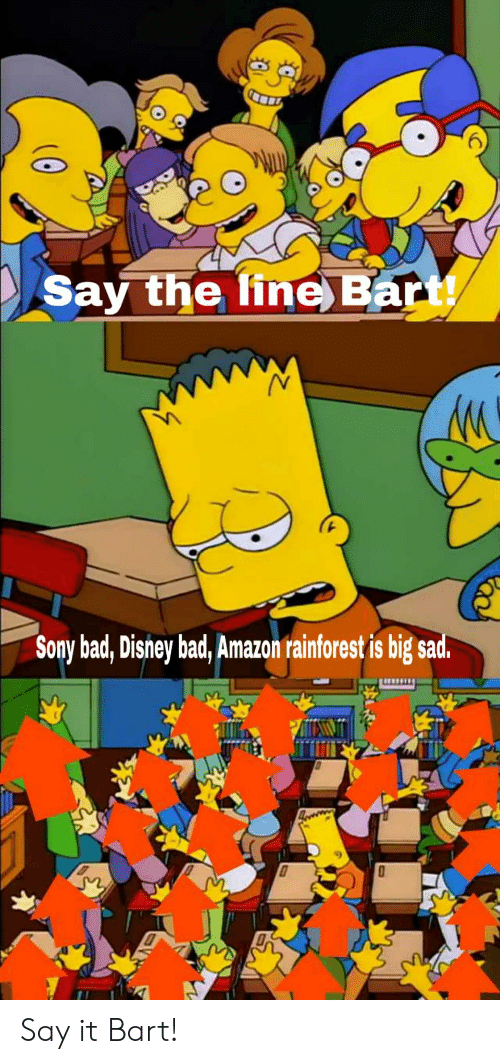 Amazon, Bad, and Disney: Say the ine Bart!  Sony bad, Disney bad, Amazon rainforest is big sad. Say it Bart!