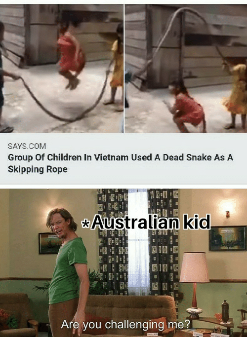Children, Snake, and Vietnam: SAYS.COM  Group Of Children In Vietnam Used A Dead Snake As A  Skipping Rope  Australian kid  Are you challenging me?