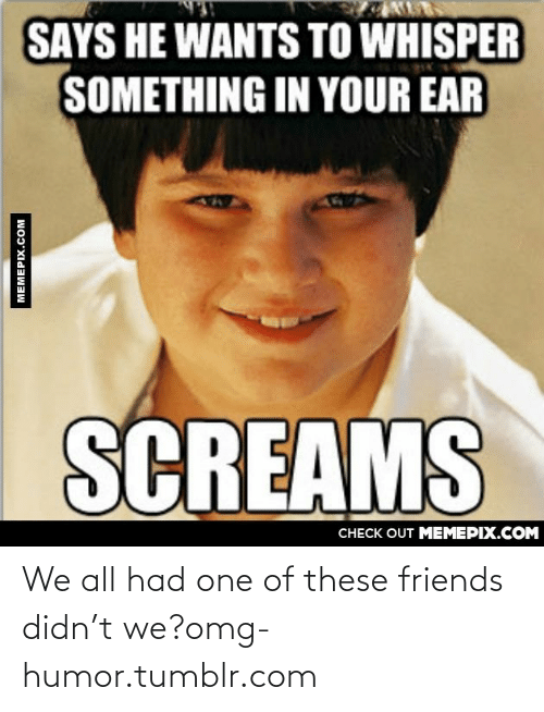 T We: SAYS HE WANTS TO WHISPER  SOMETHING IN YOUR EAR  SCREAMS  CHECK OUT MEМЕРІХ.COM  MEMEPIX.COM We all had one of these friends didn't we?omg-humor.tumblr.com