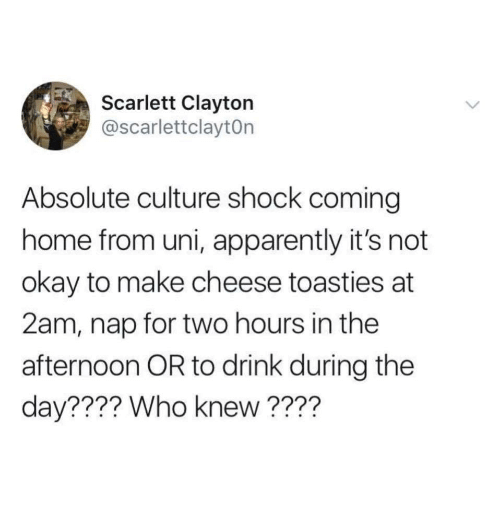 Apparently, Home, and Okay: Scarlett Clayton  @scarlettclaytOn  Absolute culture shock coming  home from uni, apparently it's not  okay to make cheese toasties at  2am, nap for two hours in the  afternoon OR to drink during the  day???? Who knew ????