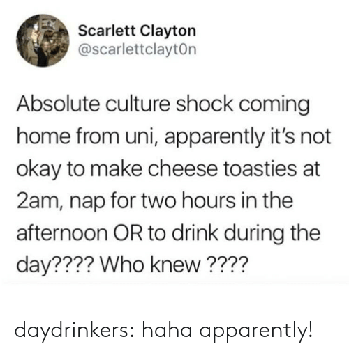 Apparently, Tumblr, and Blog: Scarlett Clayton  @scarlettclaytOn  Absolute culture shock coming  home from uni, apparently it's not  okay to make cheese toasties at  2am, nap for two hours in the  afternoon OR to drink during the  day???? Who knew?  ??? daydrinkers:  haha apparently!