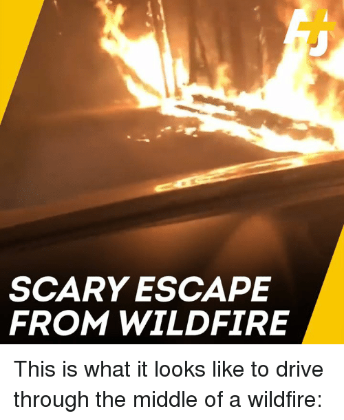 Memes, Drive, and The Middle: SCARY ESCAPE  FROM WILDFIRE This is what it looks like to drive through the middle of a wildfire: