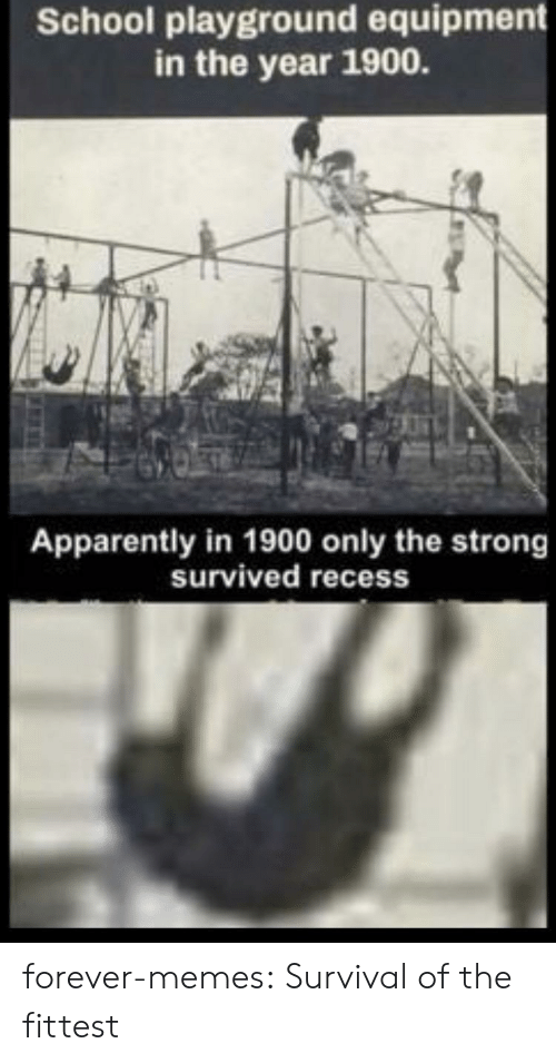 Equipment: School playground equipment  in the year 1900.  Apparently in 1900 only the strong  survived recess forever-memes:  Survival of the fittest