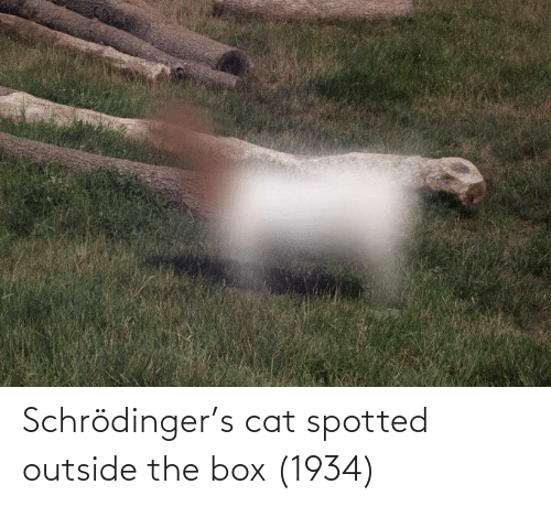 box: Schrödinger's cat spotted outside the box (1934)