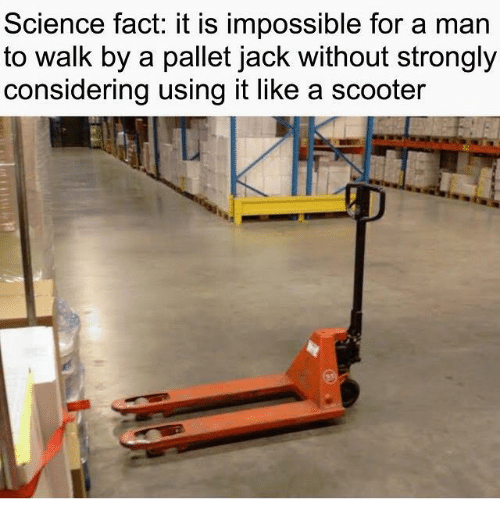 Scooter: Science fact: it is impossible for a man  to walk by a pallet jack without strongly  considering using it like a scooter