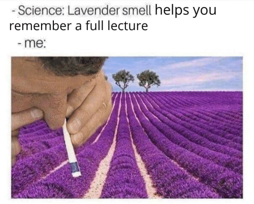Smell, Science, and Helps: -Science: Lavender smell helps you  remember a full lecture  -me: