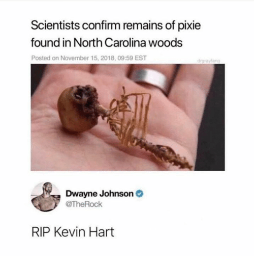 Dwayne Johnson: Scientists confirm remains of pixie  found in North Carolina woods  Posted on November 15, 2018, 09:59 EST  drgraylang  Dwayne Johnson  TheRock  RIP Kevin Hart