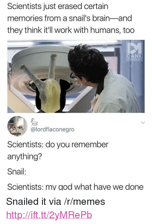 """Snailed: Scientists just erased certain  memories from a snail's brain-and  they think it'll work with humans, too  DAN  โด  @lordflaconegro  Scientists: do you remember  anything?  Snail:  Scientists: my god what have we done <p>Snailed it via /r/memes <a href=""""http://ift.tt/2yMRePb"""">http://ift.tt/2yMRePb</a></p>"""
