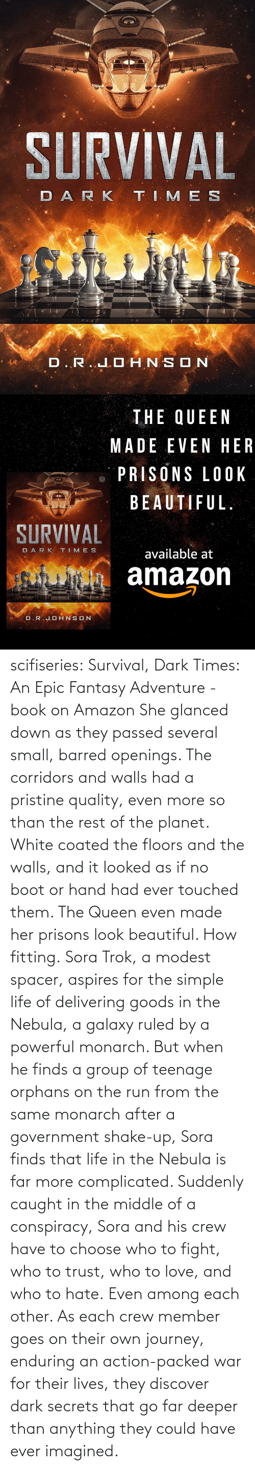 group: scifiseries: Survival, Dark Times: An Epic Fantasy Adventure - book on Amazon  She glanced down as they  passed several small, barred openings. The corridors and walls had a  pristine quality, even more so than the rest of the planet. White coated  the floors and the walls, and it looked as if no boot or hand had ever  touched them.  The Queen even made her prisons look beautiful.  How fitting. Sora  Trok, a modest spacer, aspires for the simple life of delivering goods  in the Nebula, a galaxy ruled by a powerful monarch. But when he finds a  group of teenage orphans on the run from the same monarch after a  government shake-up, Sora finds that life in the Nebula is far more complicated.  Suddenly  caught in the middle of a conspiracy, Sora and his crew have to choose  who to fight, who to trust, who to love, and who to hate. Even among each other.  As  each crew member goes on their own journey, enduring an action-packed  war for their lives, they discover dark secrets that go far deeper than  anything they could have ever imagined.