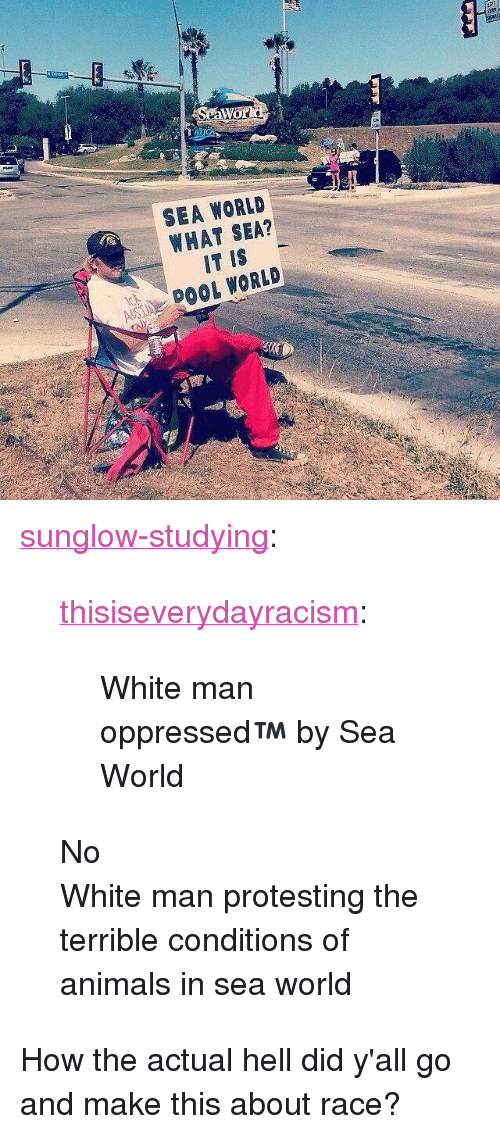 """oppressed: SEA WORLD  WHAT SEA?  IT IS  ADOOL WORLD <p><a href=""""https://sunglow-studying.tumblr.com/post/167317004967/thisiseverydayracism-white-man-oppressed-by"""" class=""""tumblr_blog"""">sunglow-studying</a>:</p>  <blockquote><p><a href=""""https://thisiseverydayracism.tumblr.com/post/142400528896/white-man-oppressed-by-sea-world"""" class=""""tumblr_blog"""">thisiseverydayracism</a>:</p>  <blockquote><p>White man oppressed™ by Sea World</p></blockquote>  <p>No</p><p>White man protesting the terrible conditions of animals in sea world </p></blockquote>  <p>How the actual hell did y'all go and make this about race?</p>"""