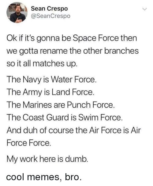 Coast Guard: Sean Crespo  @SeanCrespo  Ok if it's gonna be Space Force then  we gotta rename the other branches  so it all matches up.  The Navy is Water Force.  The Army is Land Force.  The Marines are Punch Force  The Coast Guard is Swim Force  And duh of course the Air Force is Air  Force Force.  My work here is dumb. cool memes, bro.