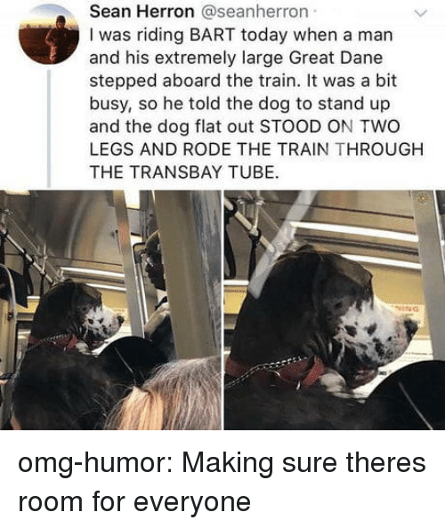 Omg, Target, and Tumblr: Sean Herron @seanherron  I was riding BART today when a man  and his extremely large Great Dane  stepped aboard the train. It was a bit  busy, so he told the dog to stand up  and the dog flat out STOOD ON TWO  LEGS AND RODE THE TRAIN THROUGH  THE TRANSBAY TUBE. omg-humor: Making sure theres room for everyone