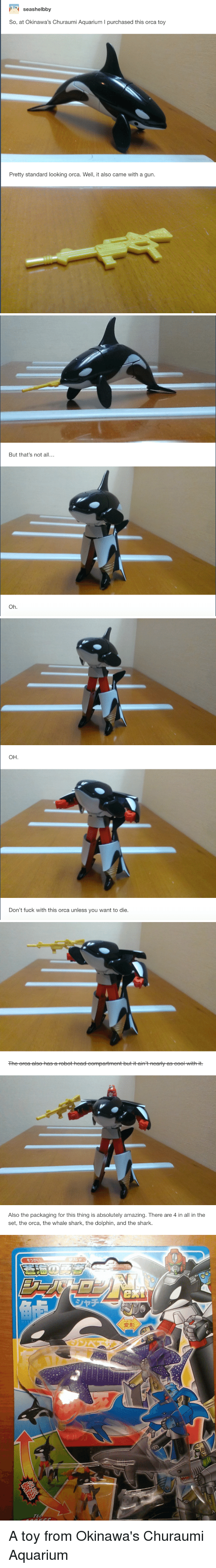 Orcas, Tumblr, and Shark: seashelbby  So, at Okinawa's Churaumi Aquarium l purchased this orca toy  Pretty standard looking orca. We  it also came with a gun   But that's not a  Oh   OH.  Don't fuck with this orca unless you want to die.   The re la asthebotheateompartmentbutitairitnear yetseooHrithit.   Also the packaging for this thing is absolutely amazing. There are 4 in all in the  set, the orca, the whale shark, the dolphin, and the shark.  ext A toy from Okinawa's Churaumi Aquarium