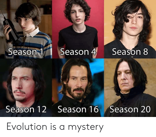 Season 8: Season 4  Season 1  Season 8  Season 12  Season 16  Season 20 Evolution is a mystery