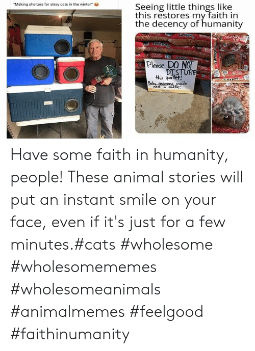 "Wholesomememes: Seeing little things like  this restores my faith in  the decency of humanity  ""Making shelters for stray cats in the winter""  Larthgro  COLOR  eegover  Please DO NO  DISTURB  this pallet!  Baby reccons nside  nest n middle Have some faith in humanity, people! These animal stories will put an instant smile on your face, even if it's just for a few minutes.#cats #wholesome #wholesomememes #wholesomeanimals #animalmemes #feelgood #faithinumanity"
