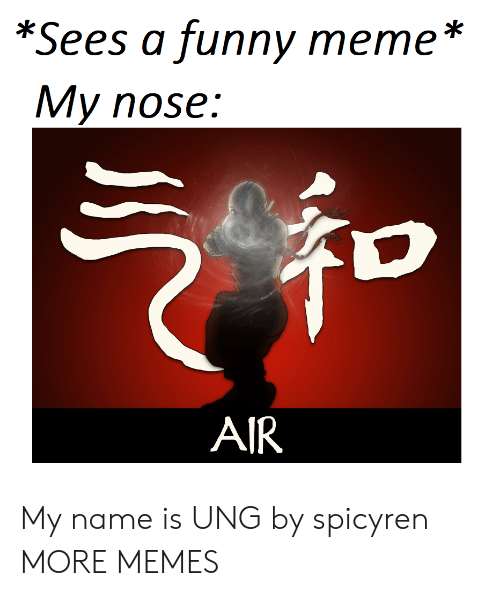 funny meme: *Sees a funny meme *  My nose:  AIR My name is UNG by spicyren MORE MEMES