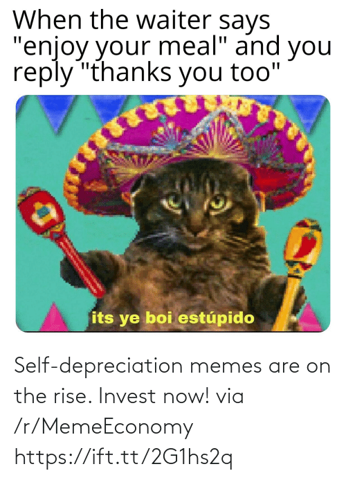 Https: Self-depreciation memes are on the rise. Invest now! via /r/MemeEconomy https://ift.tt/2G1hs2q