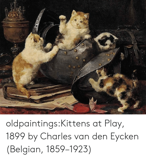 Tumblr, Blog, and Kittens: sen oldpaintings:Kittens at Play, 1899 by  Charles van den Eycken (Belgian, 1859–1923)