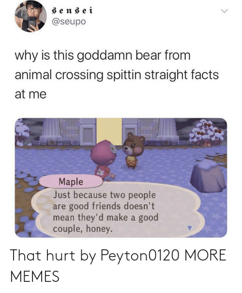 Animal Crossing: sensei  @seupo  why is this goddamn bear from  animal crossing spittin straight facts  at me  Maple  Just because two people  are good friends doesn't  mean they'd make a good  couple, honey. That hurt by Peyton0120 MORE MEMES
