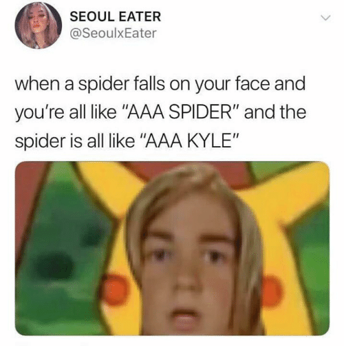 """seoul: SEOUL EATER  @SeoulxEater  when a spider falls on your face and  you're all like """"AAA SPIDER"""" and the  spider is all like """"AAA KYLE"""""""