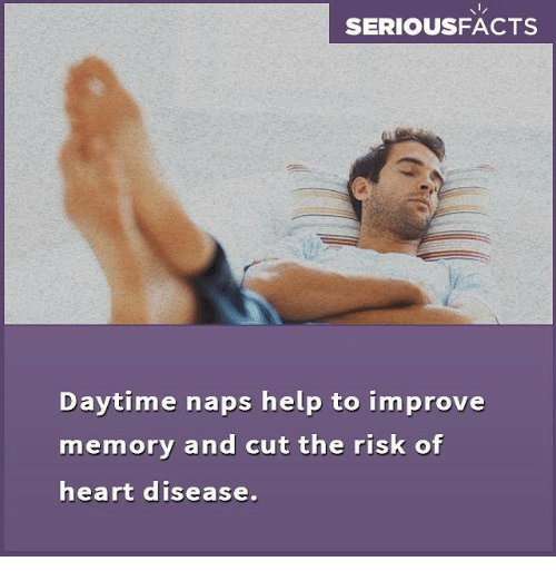 heart disease: SERIOUSFACTS  Daytime naps help to improve  memory and cut the risk of  heart disease