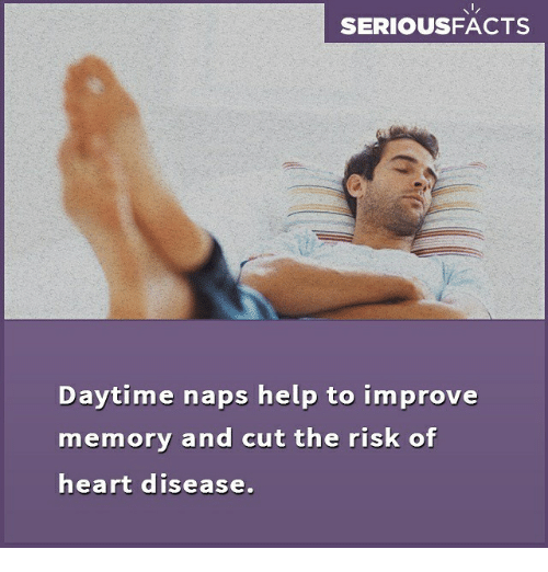 heart disease: SERIOUSFACTS  Daytime naps help to improve  memory and cut the risk of  heart disease.