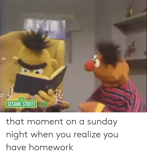 sesame: SESAME STREET that moment on a sunday night when you realize you have homework