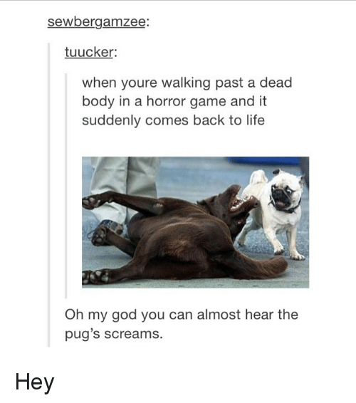 horror games: sewbergamzee  tuucker:  when youre walking past a dead  body in a horror game and it  suddenly comes back to life  Oh my god you can almost hear the  pug's screams. Hey