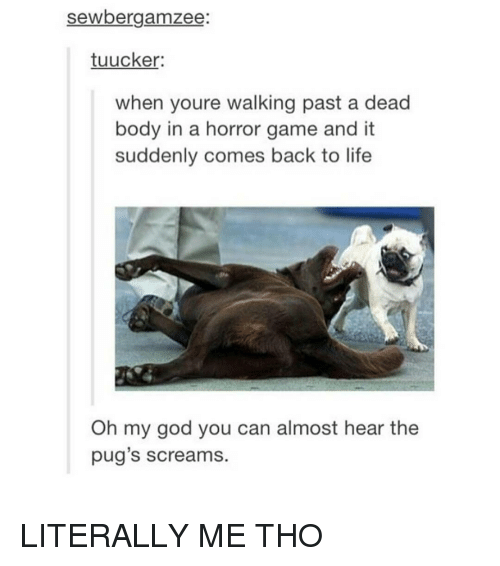 horror games: sewbergamzee  tuucker:  when youre walking past a dead  body in a horror game and it  suddenly comes back to life  Oh my god you can almost hear the  pug's screams. LITERALLY ME THO