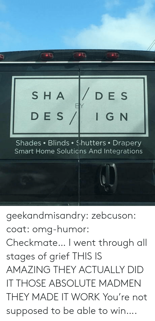 blinds: SHADESs  D E S  DES/IG N  I G N  Shades Blinds Shutters Drapery  Smart Home Solutions And Integrations geekandmisandry: zebcuson:  coat:  omg-humor: Checkmate…  I went through all stages of grief   THIS IS AMAZING THEY ACTUALLY DID IT THOSE ABSOLUTE MADMEN THEY MADE IT WORK   You're not supposed to be able to win….