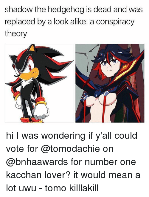 Hedgehoging: shadow the hedgehog is dead and was  replaced by a look alike: a conspiracy  theory hi I was wondering if y'all could vote for @tomodachie on @bnhaawards for number one kacchan lover? it would mean a lot uwu - tomo killlakill