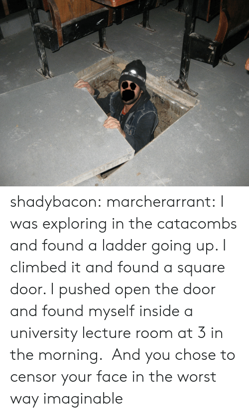 Ladder: shadybacon: marcherarrant: I was exploring in the catacombs and found a ladder going up. I climbed it and found a square door. I pushed open the door and found myself inside a university lecture room at 3 in the morning.   And you chose to censor your face in the worst way imaginable