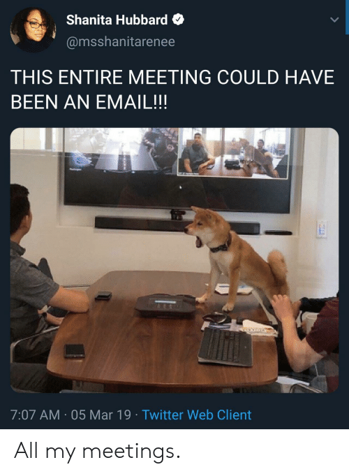 Twitter, Email, and Been: Shanita Hubbard  @msshanitarenee  THIS ENTIRE MEETING COULD HAVE  BEEN AN EMAIL!!  7:07 AM 05 Mar 19 Twitter Web Client All my meetings.