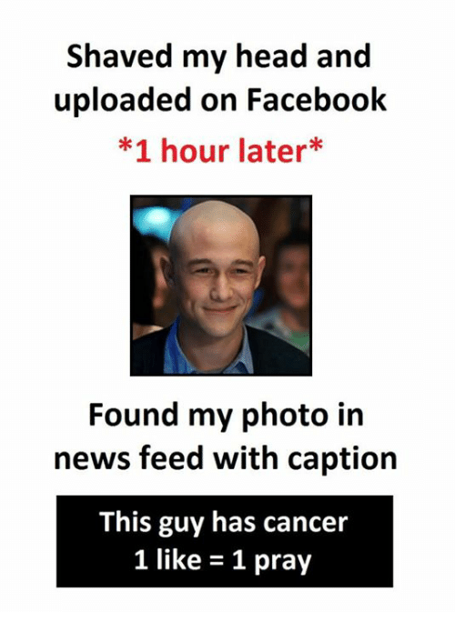 Facebook, Head, and News: shaved my head and  uploaded on Facebook  *1 hour later  Found my photo in  news feed with caption  This guy has cancer  1 like 1 pray