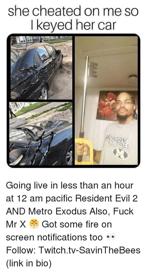 Metro Exodus: she cheated on me so  I keyed her car  IOLVERINES Going live in less than an hour at 12 am pacific Resident Evil 2 AND Metro Exodus Also, Fuck Mr X 😤 Got some fire on screen notifications too 👀 Follow: Twitch.tv-SavinTheBees (link in bio)