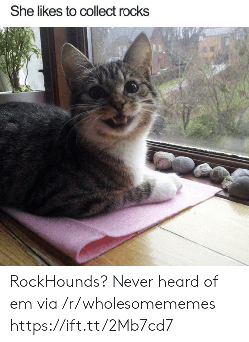 Never, Via, and She: She likes to collect rocks RockHounds? Never heard of em via /r/wholesomememes https://ift.tt/2Mb7cd7
