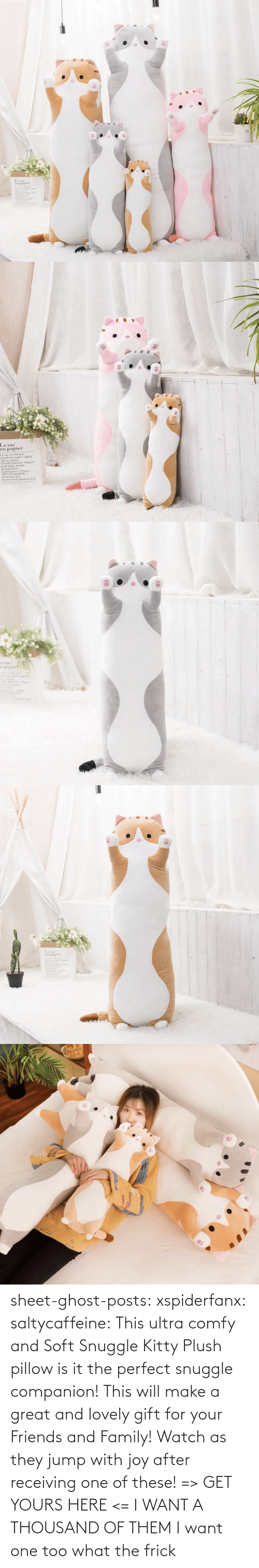 One Of These: sheet-ghost-posts: xspiderfanx:  saltycaffeine:  This ultra comfy and Soft Snuggle Kitty Plush pillow is it the perfect snuggle companion! This will make a great and lovely gift for your Friends and Family! Watch as they jump with joy after receiving one of these! => GET YOURS HERE <=    I WANT A THOUSAND OF THEM  I want one too what the frick
