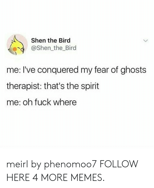 Thats The Spirit: Shen the Bird  @Shen the Bird  me: I've conquered my fear of ghosts  therapist: that's the spirit  me: oh fuck where meirl by phenomoo7 FOLLOW HERE 4 MORE MEMES.