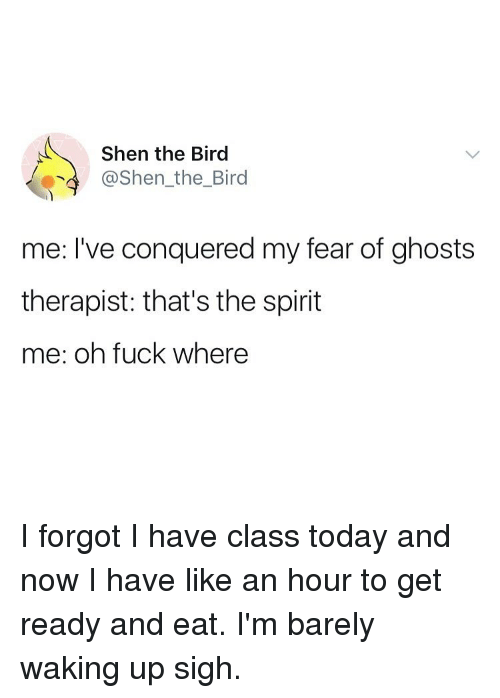 Thats The Spirit: Shen the Bird  @Shen_the_Bird  me: I've conquered my fear of ghosts  therapist: that's the spirit  me: oh fuck where I forgot I have class today and now I have like an hour to get ready and eat. I'm barely waking up sigh.