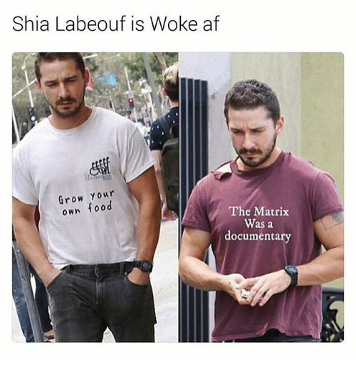 Af, Food, and Funny: Shia Labeouf is Woke af  row Your  own food  The Matrix  Was a  documentary
