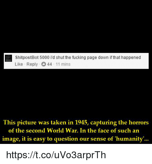 Fucking, Image, and World: ShitpostBot 5000 i'd shut the fucking page down if that happened  Like Reply 44 11 mins  Ihis picture was laken in 1945, capturing the horrors  of the second World War. In the face of such an  image, it is easy to question our sense of 'humanity'... https://t.co/uVo3arprTh